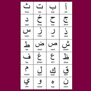 "Arabic Alphabet: A4 Maroon Arabic Notebook with Arabic Alphabet table, 8.5x11"", Blank lined wide ruled paper with right margin for right to left Arabic writing, perfect bound, Soft back"