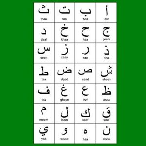 "Arabic Alphabet: A4 Green Arabic Notebook with Arabic Alphabet table, 8.5x11"", Blank lined wide ruled paper with right margin for right to left Arabic writing, perfect bound, Soft back"