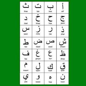 """Arabic Alphabet: A4 Green Arabic Notebook with Arabic Alphabet table, 8.5x11"""", Blank lined wide ruled paper with right margin for right to left Arabic writing, perfect bound, Soft back"""