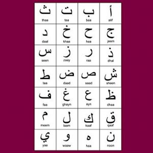 """Arabic Alphabet: A4 Maroon Arabic Notebook with Arabic Alphabet table, 8.5x11"""", Blank lined wide ruled paper with right margin for right to left Arabic writing, perfect bound, Soft back"""