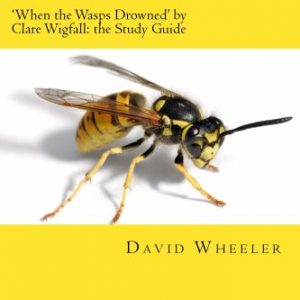 'When the Wasps Drowned' by Clare Wigfall: the Study Guide (Classic Guides to Literature)